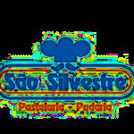 Carousel Partners 12 – S Silvestre